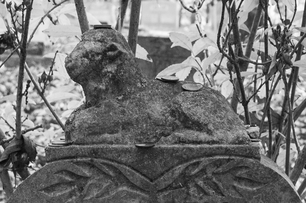 sweet lamb child's grave