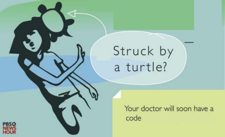 Struck-by-Turtle-B.jpg