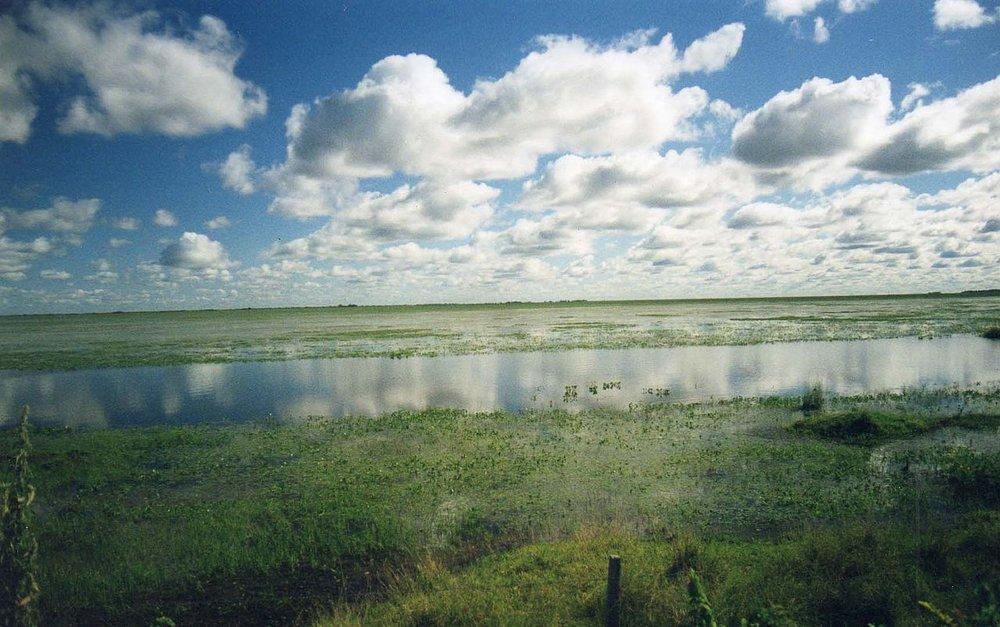 1280px-Llanos3.jpg