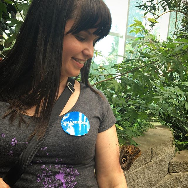 "This owl butterfly landed on my arm during a field trip to the science center with my son. Max and I looked at each other and knew it was Eva saying hello. There were so many people in there with a bunch of butterflies, and this one chose me!  Now, it doesn't stop there. I shared this photo with my dear friend who lost her daughter to the same syndrome Eva had. It's easier for spirits to use technology to communicate because it's all energy. This photo kept reappearing in our back and forth messages on Instagram for days. My friend couldn't see it, but every time I would open a new message there was this photo. It was like an ""I love you mama, I'm with you,"" over and over again. 🦋 What a blessing this sign from beyond was to my aching mama heart. 💫 Thank you, Eva, for letting me know you're always near! . . #signs #signsfromheaven #spiritbaby #communication #angelbaby #babyloss #pregnancyloss  #trust #faith #evalastingpeace"