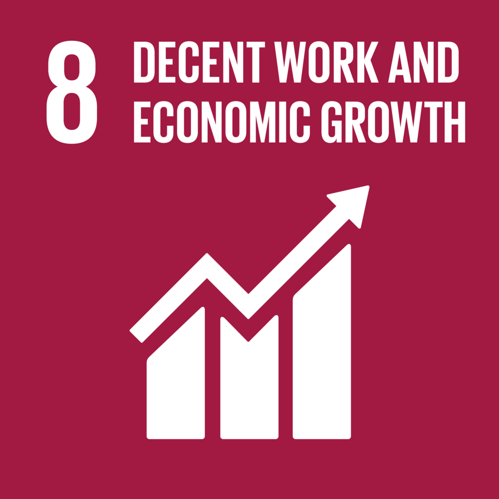 Goal 8. Promote sustained, inclusive and sustainable economic growth, full and productive employment and decent work for all    12 Targets    17 Indicators