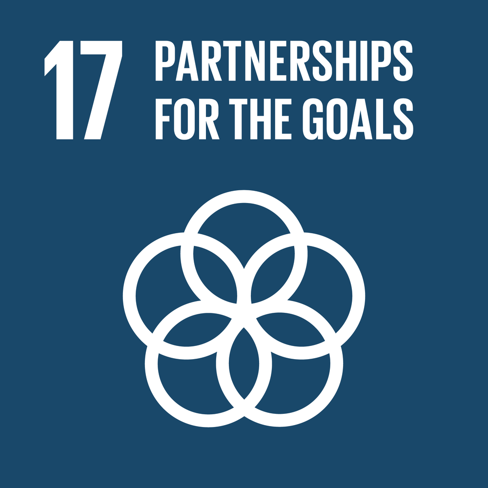 Goal 17. Strengthen the means of implementation and revitalize the Global Partnership for Sustainable Development Finance    19 Targets    25 Indicators