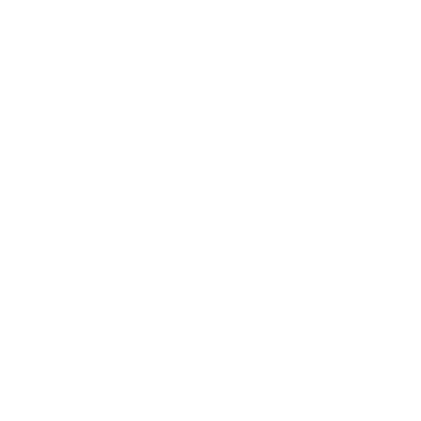 Full Punch