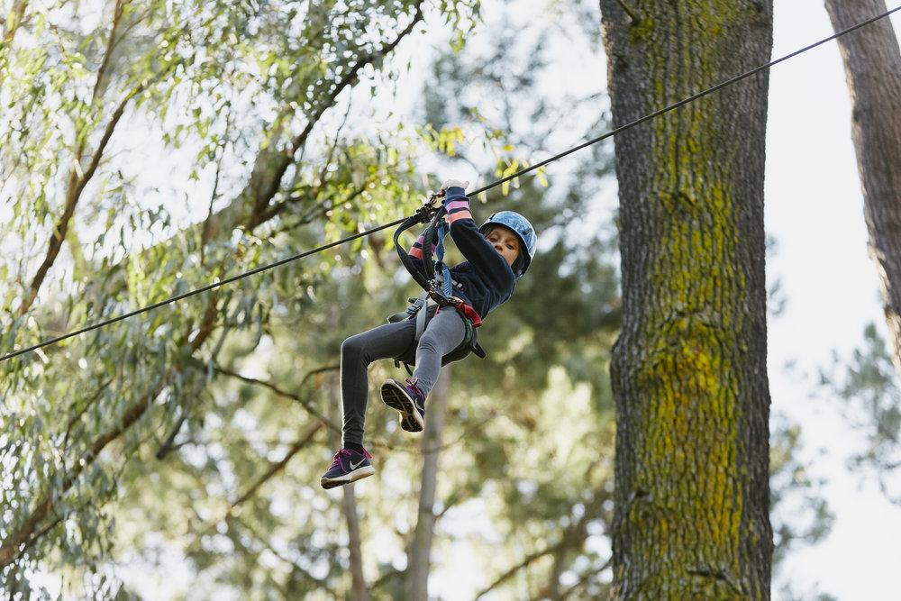 Forest_Adventures- 50.jpg