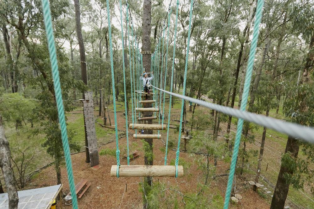 Forest_Adventures- 168.jpg