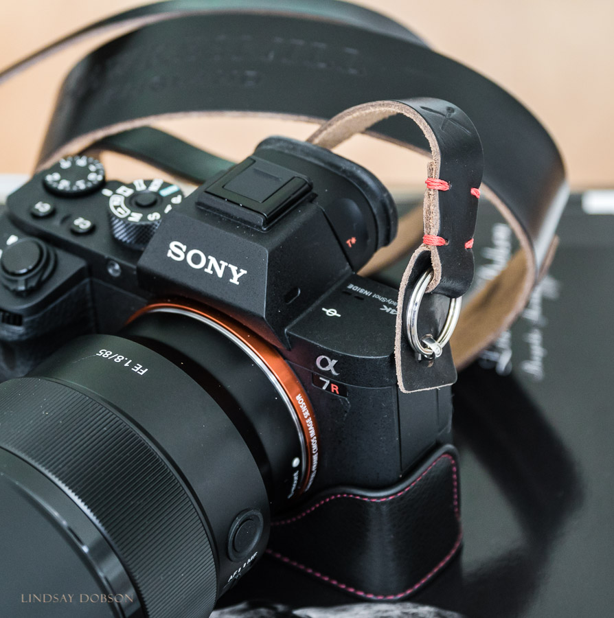 The small Sony A7Rii is a high performing full frame mirrorless camera aimed at discerning professionals. With a resolution of 42MP (18MP in Super 35 Mode) and arguably the finest IQ of its generation. Fitted with a small and lightweight prime lens, it's a wedding and portrait photographer's dream. This camera was released in 2015. I'm yet to see anyone complaining that it looks 'unprofessional'. Despite being fortunate in owning one of these, as of 2018 my most widely used camera is still my u43 Panasonic GX8