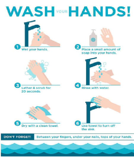 School N°8 - Handwashing Day1.png