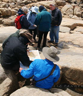 Participants in the  Geology in Action  field day learn about mapping features with Geological Survey of WA researcher Dr Catherine Spaggiari (centre, green jacket)