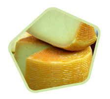 cheese-202h.png