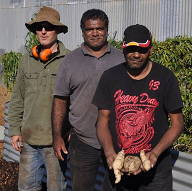 Dr Geoff Woodall with members of the Mid West Aboriginal Groups, harvesting  Ipomoea calobra  tubers