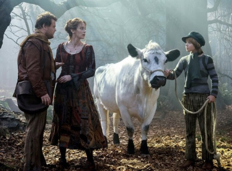 Tug the cow in Into the woods