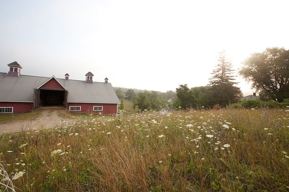 """Glynwood - """"Glynwood's mission is to ensure the Hudson Valley is a region defined by food, where farming thrives.If we succeed, residents are nourished and visitors are inspired. While our operations are based mostly in this region, we believe our values serve a larger social purpose."""""""