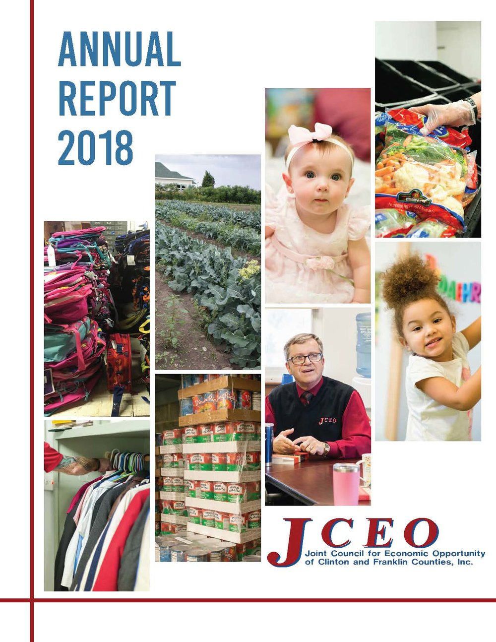 Pages from AnnualReport-2018-V5 Compressed.pdf.jpg