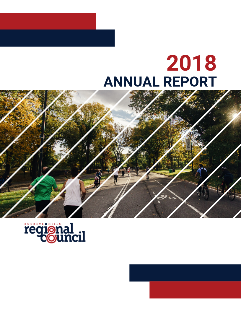 2018 BH Annual Report (9).png