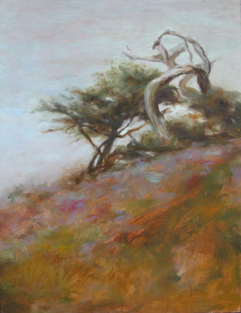 gnarledtree.jpg
