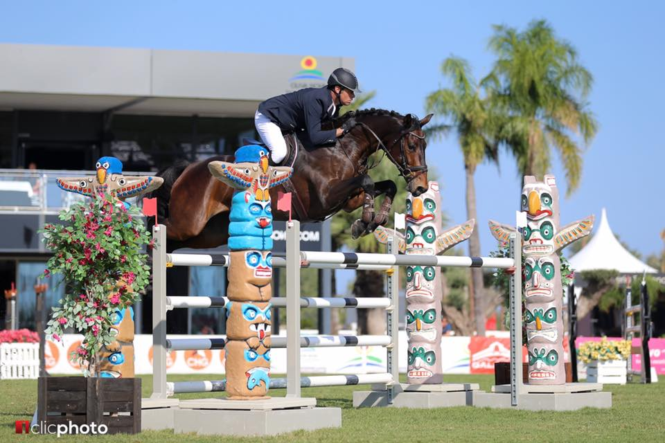WOLKE 334 - SUCCESSFULLY COMPETED UP TO CSI3* AND CSIO3* NATIONS CUP FOR SOUTH AFRICA