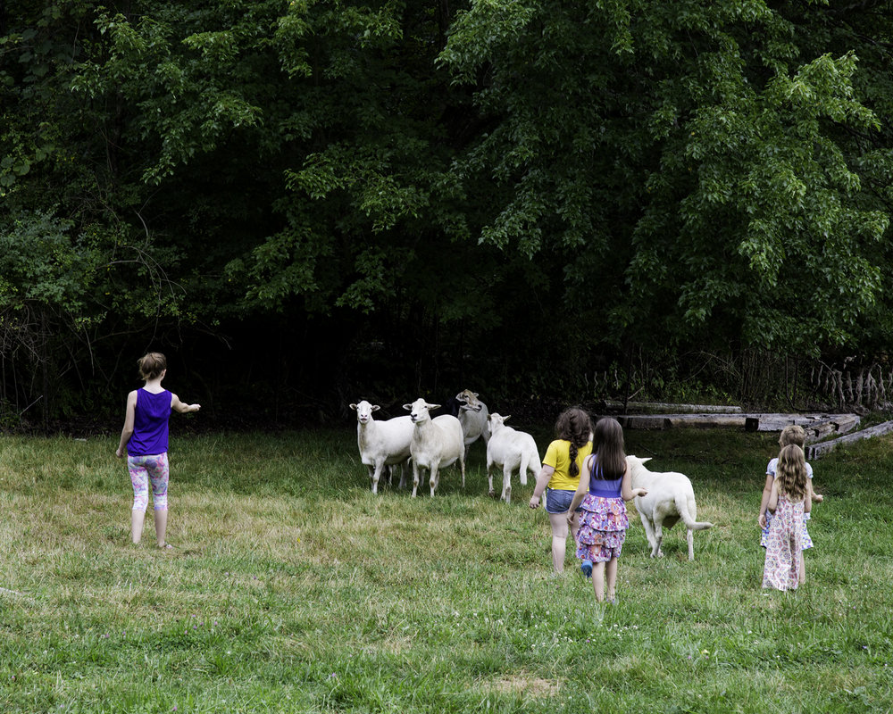 08102016_Emma Pratte_Ryder Farm1_13.jpg