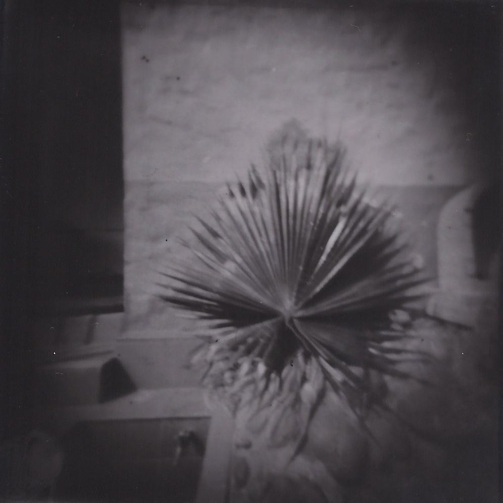 Silver Gelatin print - Pinhole