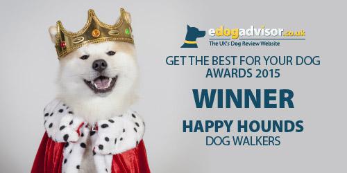 eDog_awards_500x250_happyHounds1.jpg