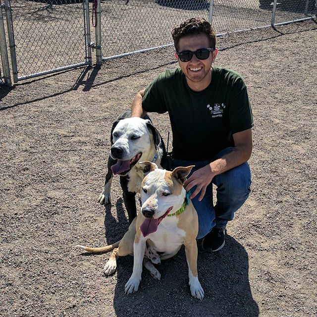 Those times you make friends with dogs who had no Intrest being yours    #dog #rescue #shelterdog  #dogsofinstgram #dogsofinsta #instadogs #colorado #dogsofig #makingfriends #friends #adoptdontshop #volunteer #volunteering #success #doglife #dogtraining #dogtrainer #thegooddogproject #adamscounty