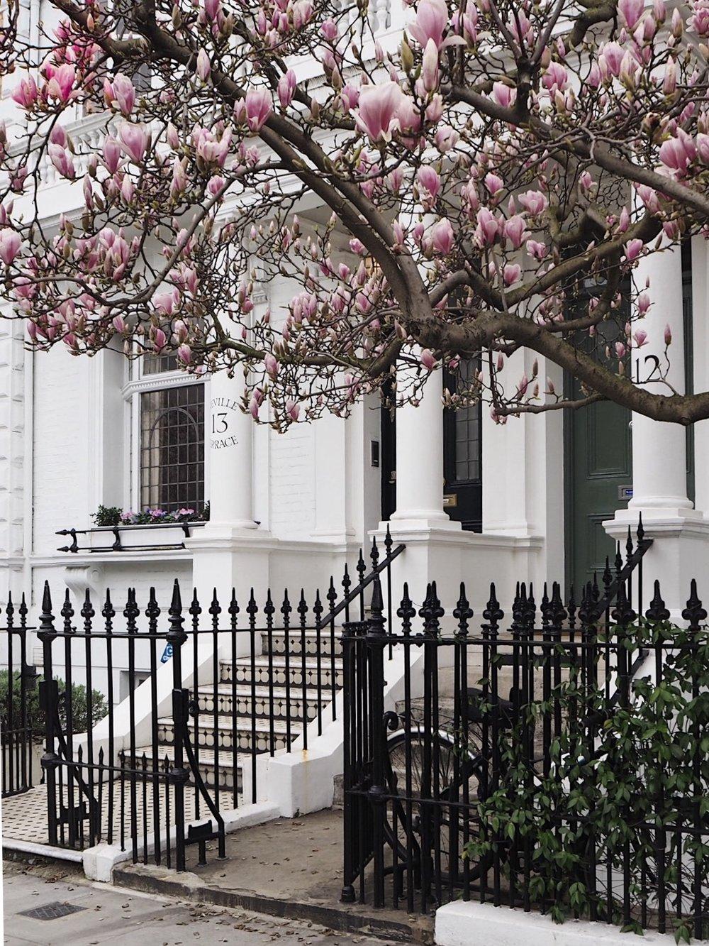 Kensington & Chelsea_1.jpeg