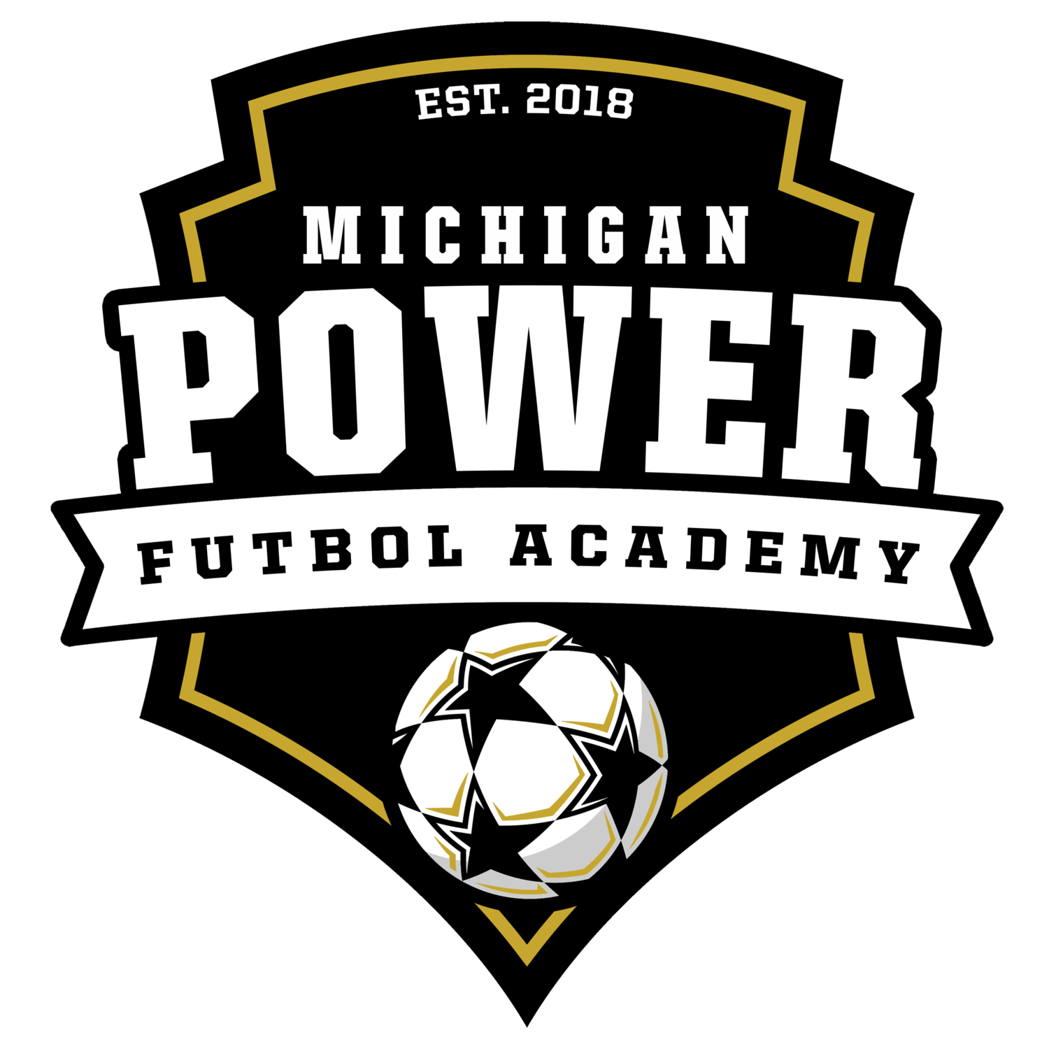 Michigan Power Futbol