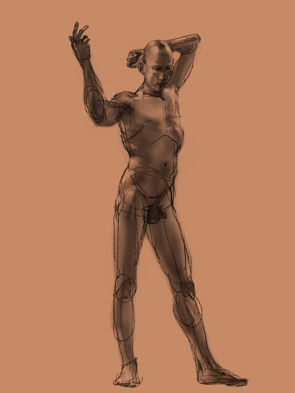 Standing Male. Sketchbook Pro