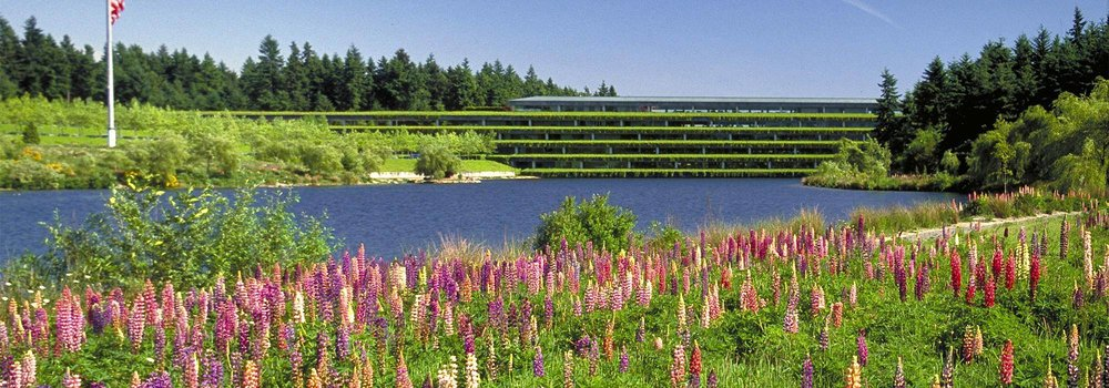 Figure 3: Weyerhaeuser Corporate Headquarters merges Modernism with environmental sensitivity