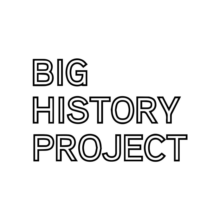 bnb-website-logos_0023_big history project.jpg