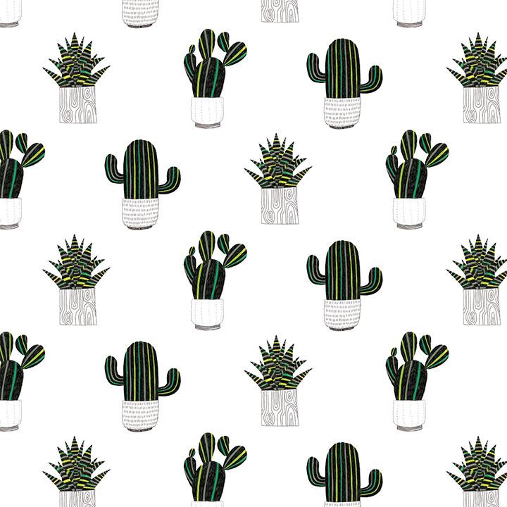 cactuspattern_0002_Layer-1.jpg