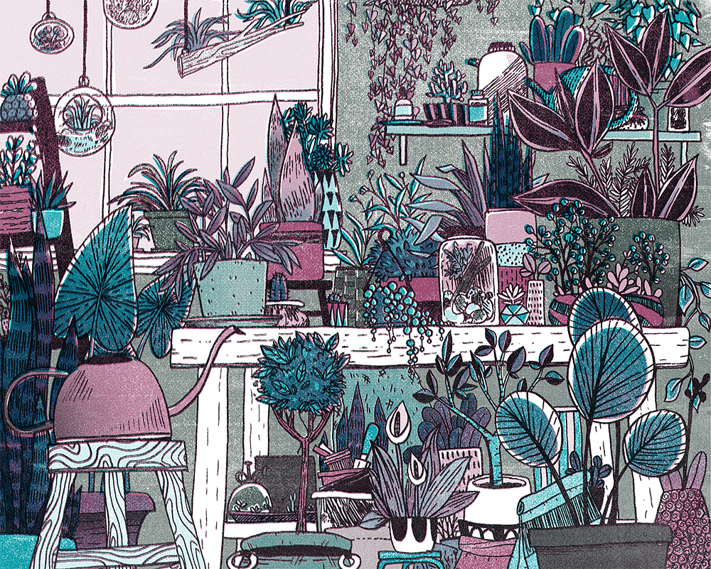 potting-shed-colorways_0000_Layer-4.jpg