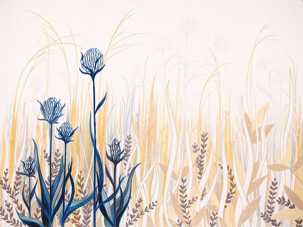 Liz Nugent - Plants 2.jpg