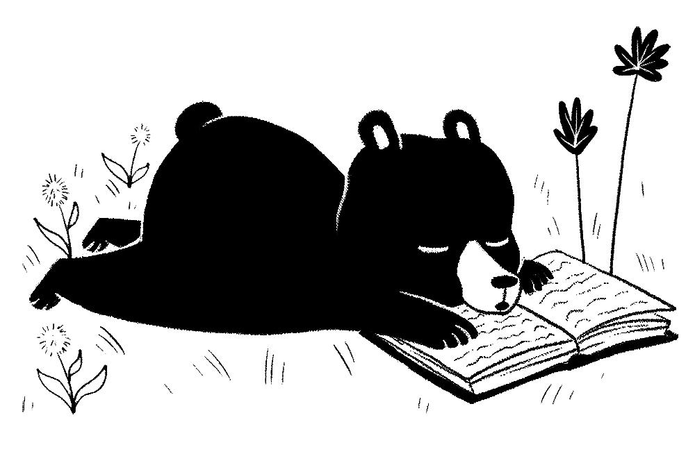 bearspot.jpg
