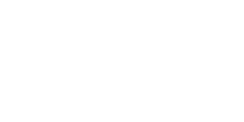 even-keel-updated-insole-icon.png