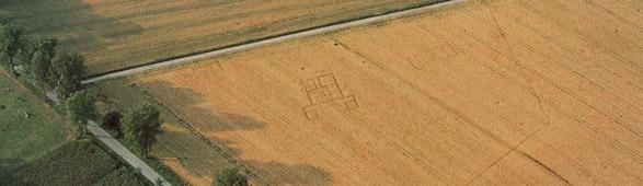 aerial_archaeology_1.jpg
