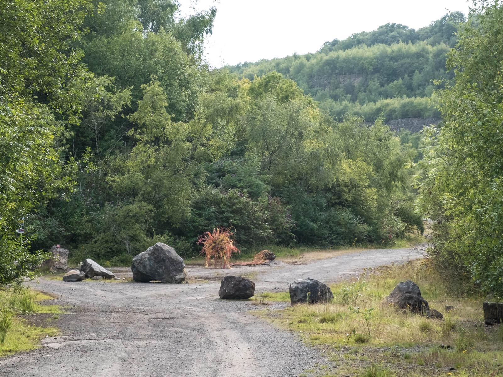Cirri at Westdown/Asham quarry