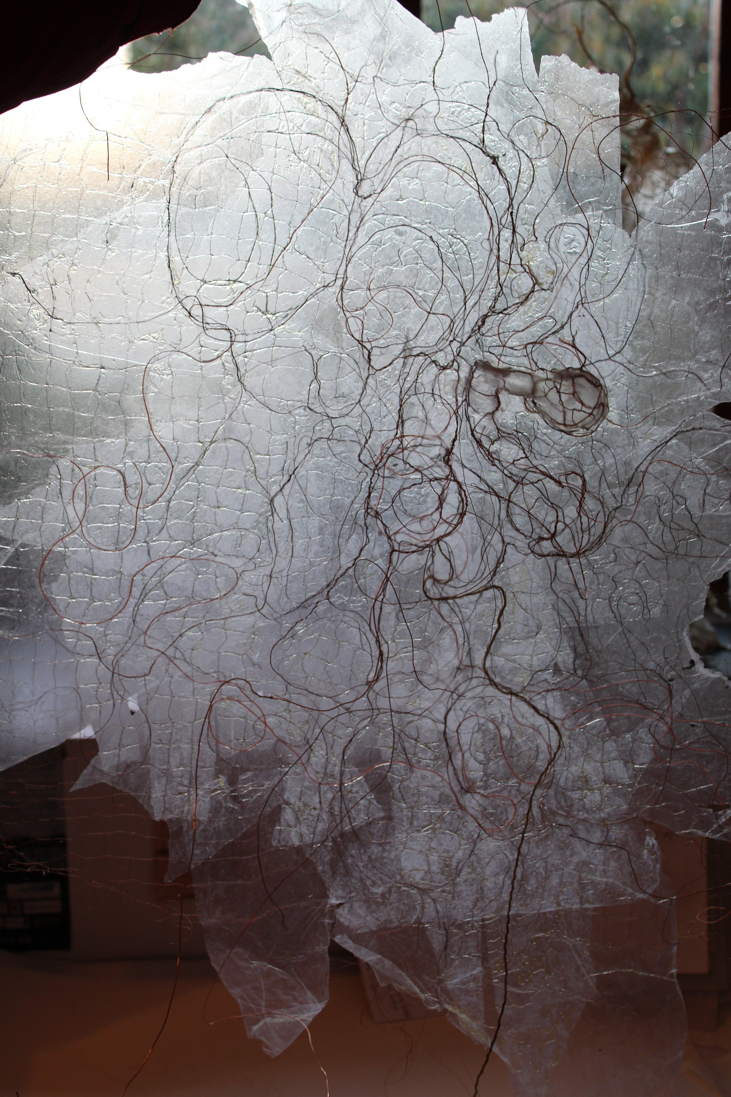 Wire and paper drawing with linseed oil added for transparency and skin-like quality in progress