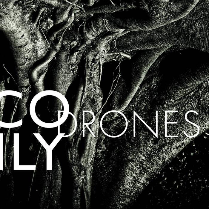 NICO MUHLYDRONES - CD/DIGITAL