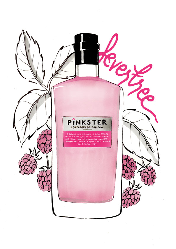 Pinkster with Fever Tree tonic and macerated raspberries