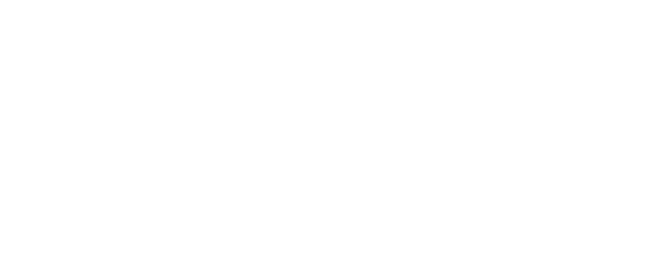 Functional Intelligent Training