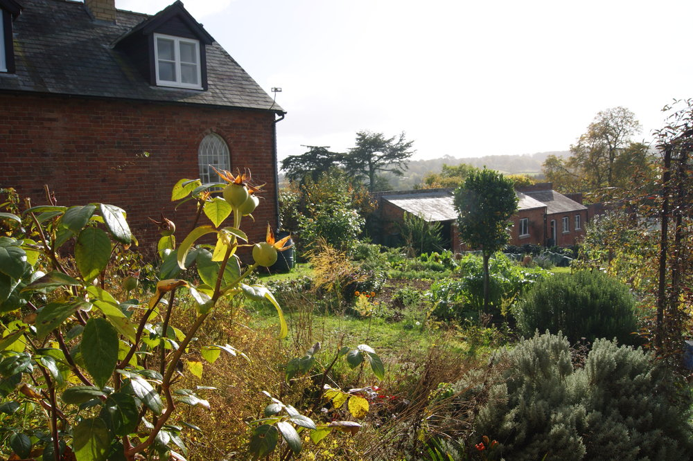 View to The Gardener's Cottage