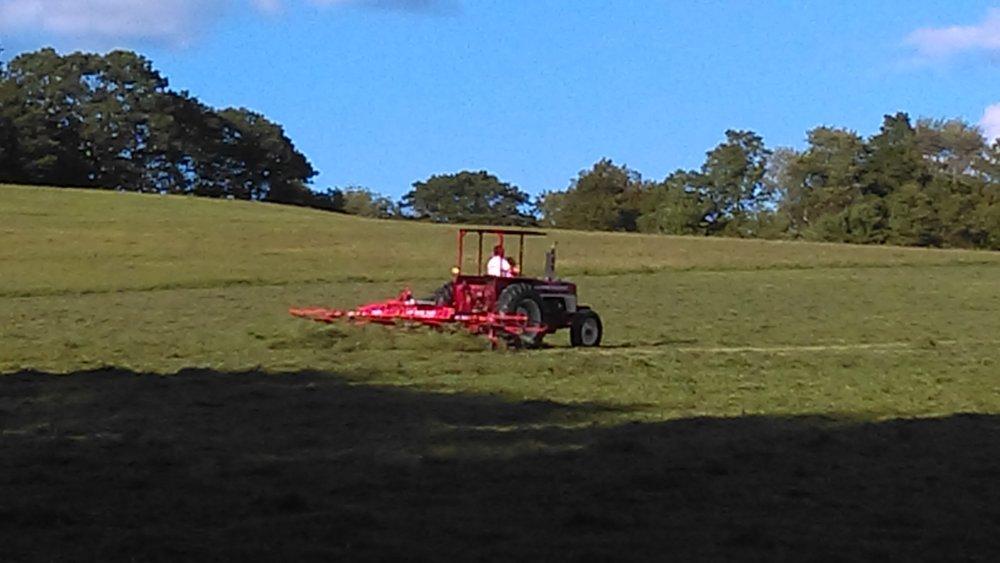 haying 2.jpg
