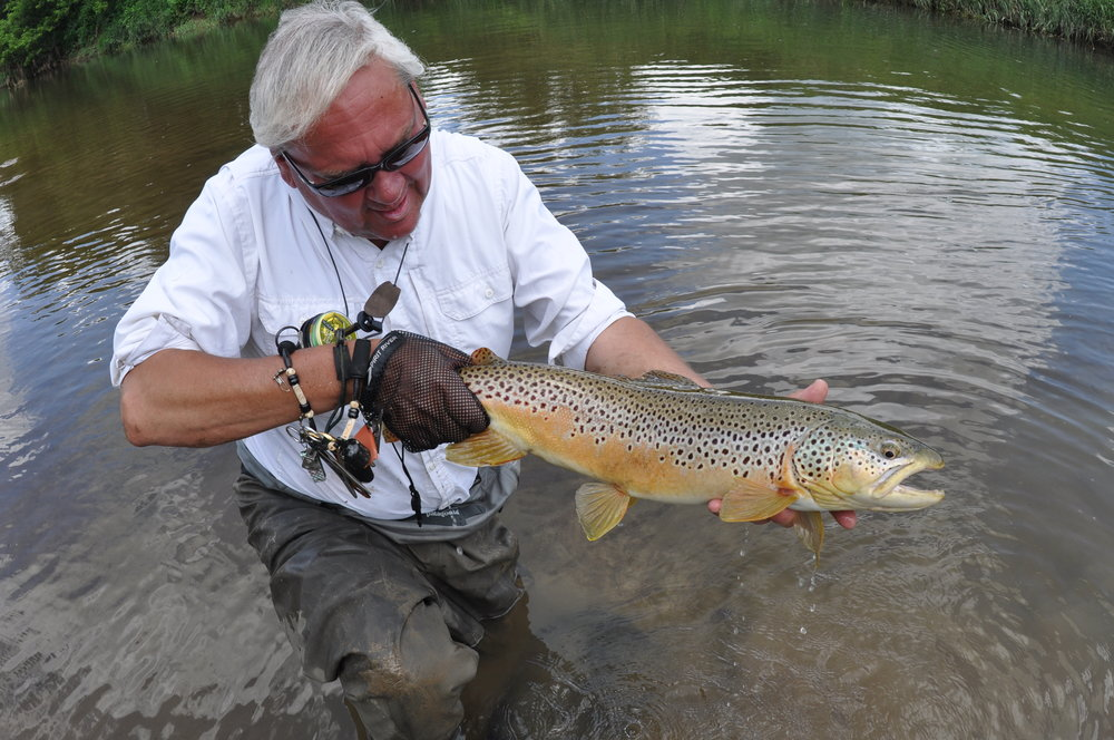 Author and guide Matthew Supinski with a stunning brown trout from a Wisconsin Driftless Spring Coulee