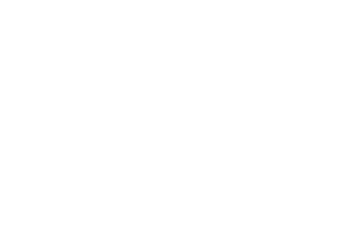 Partnership for Economic Development