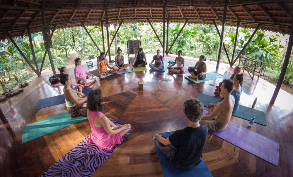 Yoga & Meditation Shala