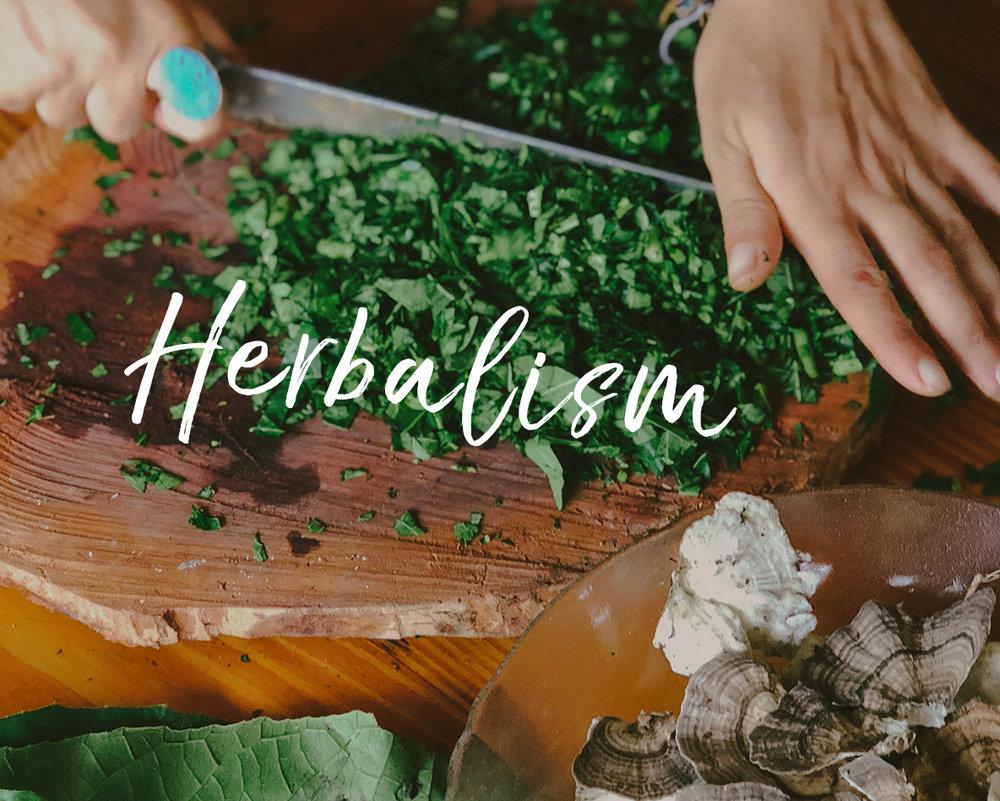herbalism-thumbnail.jpg