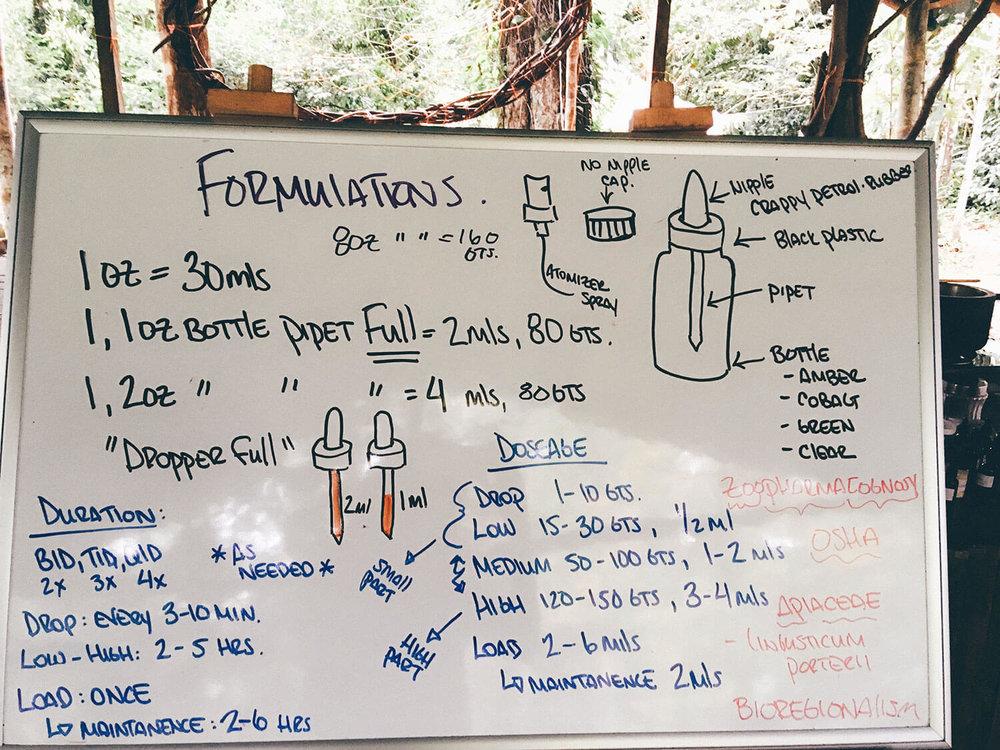 permaculture-herbalism-6.jpg