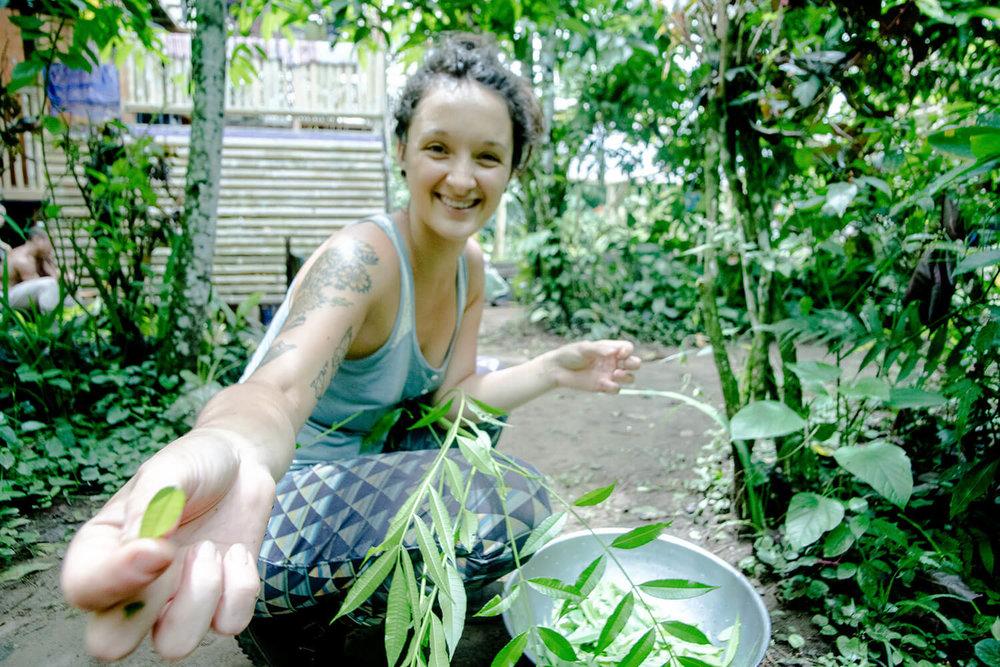 permaculture-herbalism-9.jpg