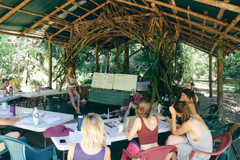 permaculture-herbalism-10.jpg