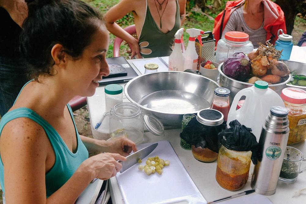 permaculture-herbalism-14.jpg